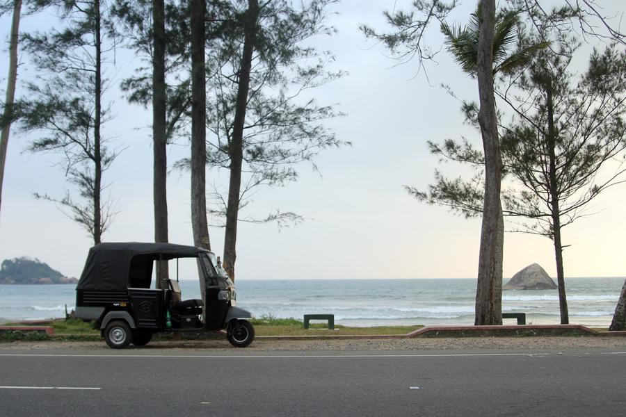 Шри-Ланка в прямом эфире