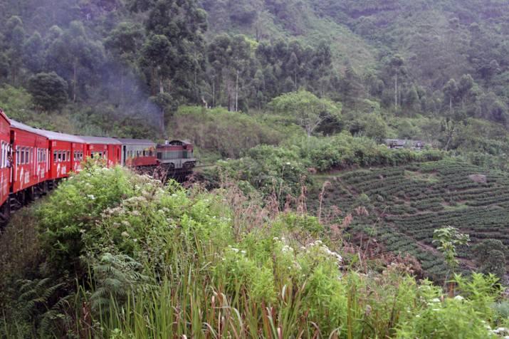 Железная дорога на Шри-Ланке
